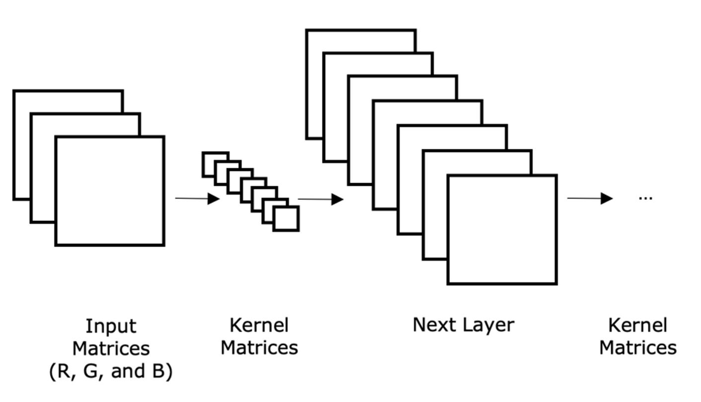 Convolutional Neural Networks (CNNs)_image